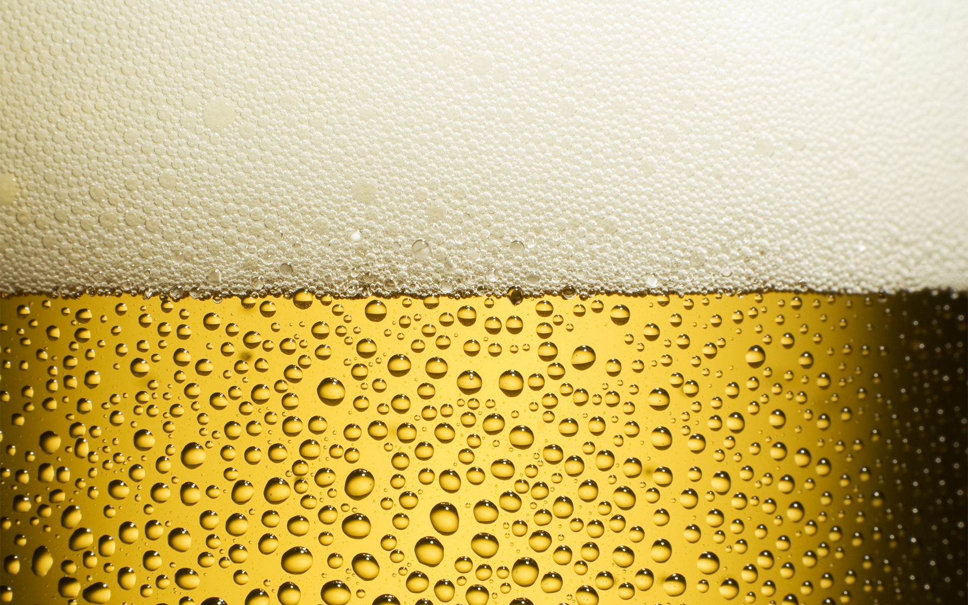 пена, пиво, texture, background, photo, beer background texture