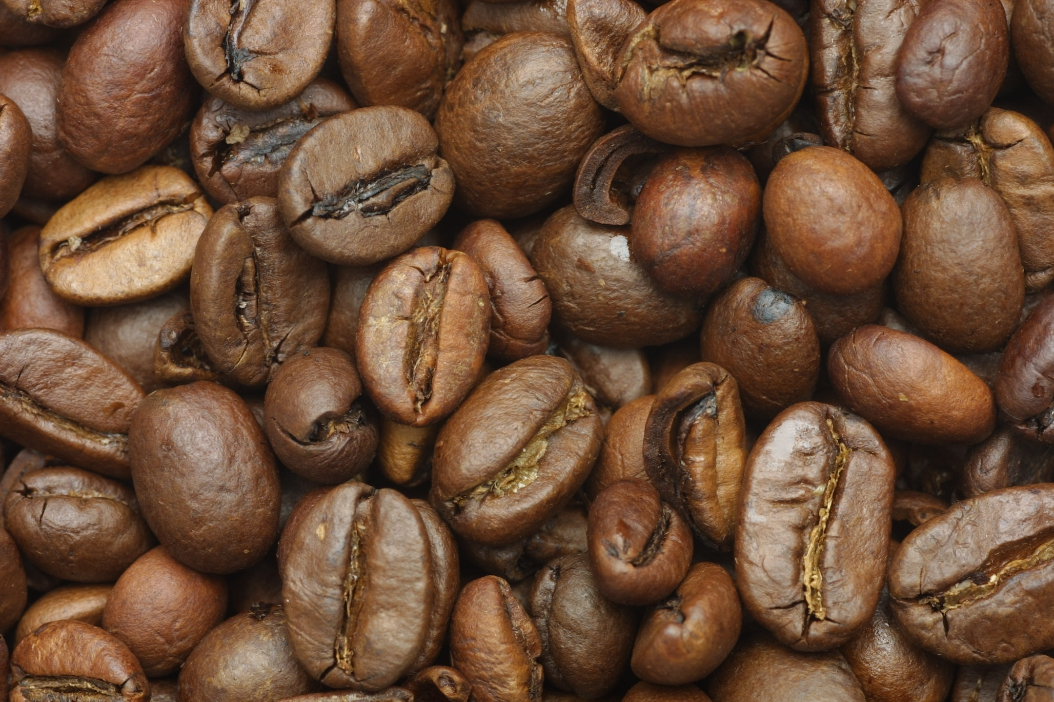 coffee, coffee beans, download photo, background, coffee, texture