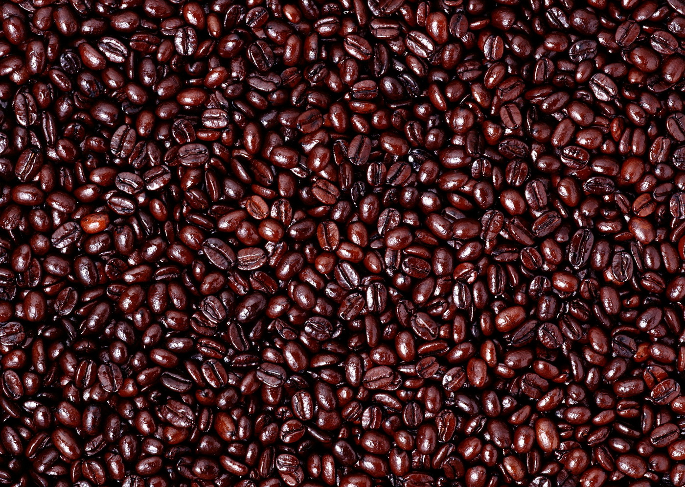 coffee, coffee beans, download photo, background, coffee, texture ...: bgfons.com/download/1529