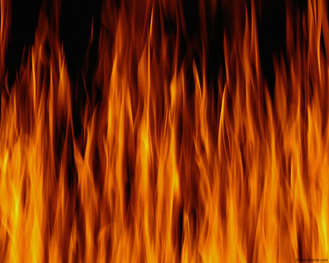 огонь, texture, огня, flame, fire background texture, download photo, background, языки пламени