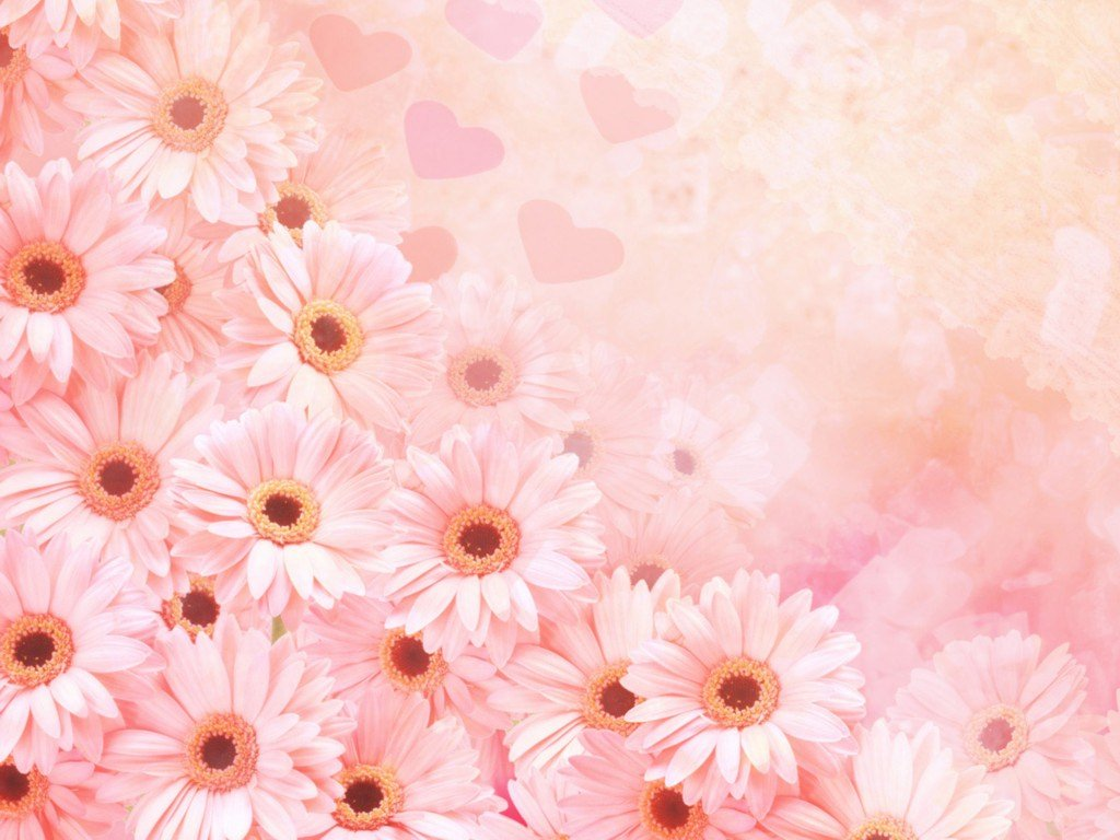 Background Pictures Of Flowers Image category Flowers