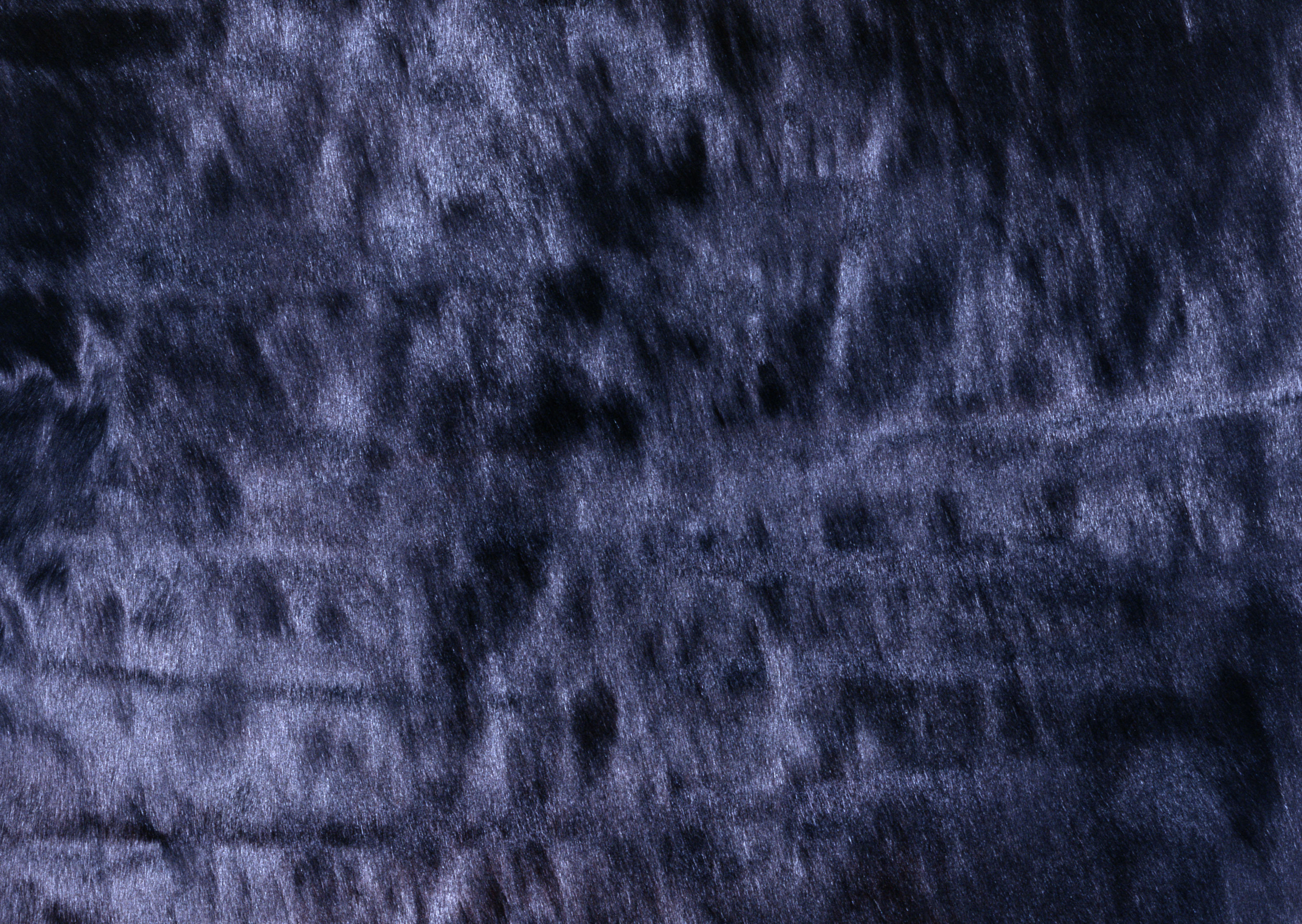 Fur texture background image