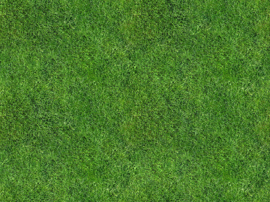 grass background texture - photo #10
