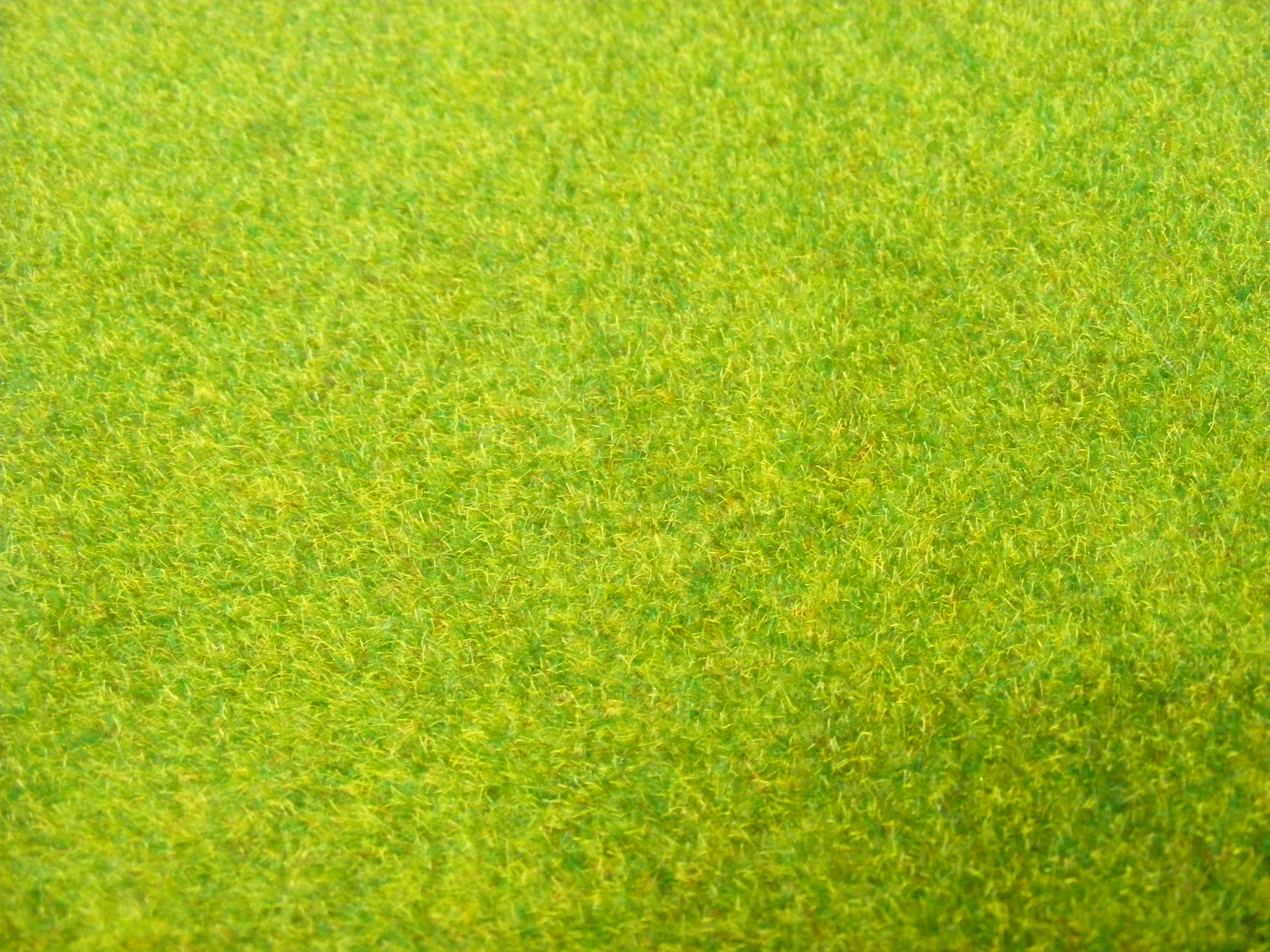 grass background texture - photo #15