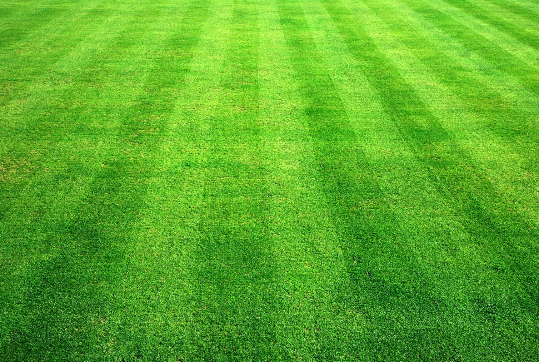 Gridiron Green Grass Background Texture Download Photo