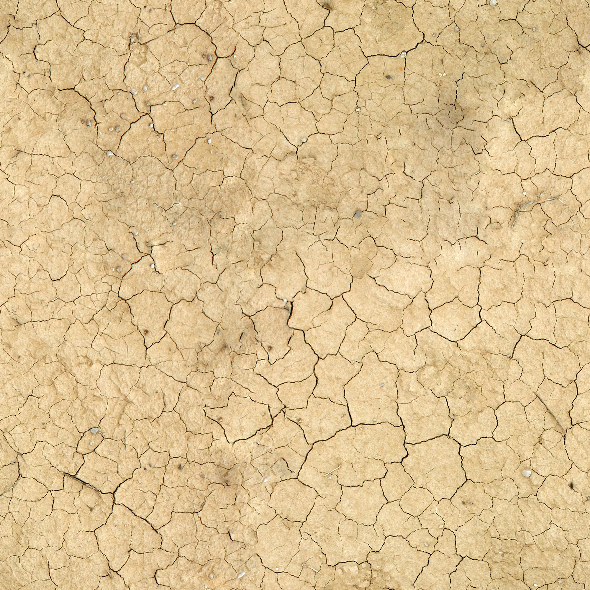 texture ground earth, download photo, background, ground texture