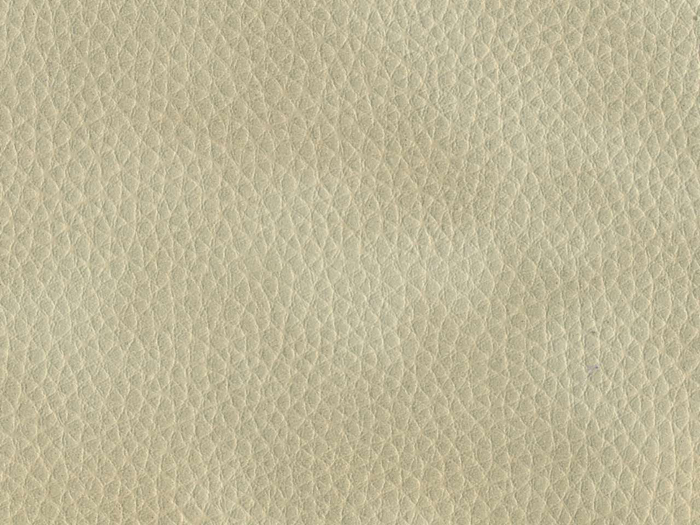 light-gray leather, texture skin, gray light leather texture, download photo, background