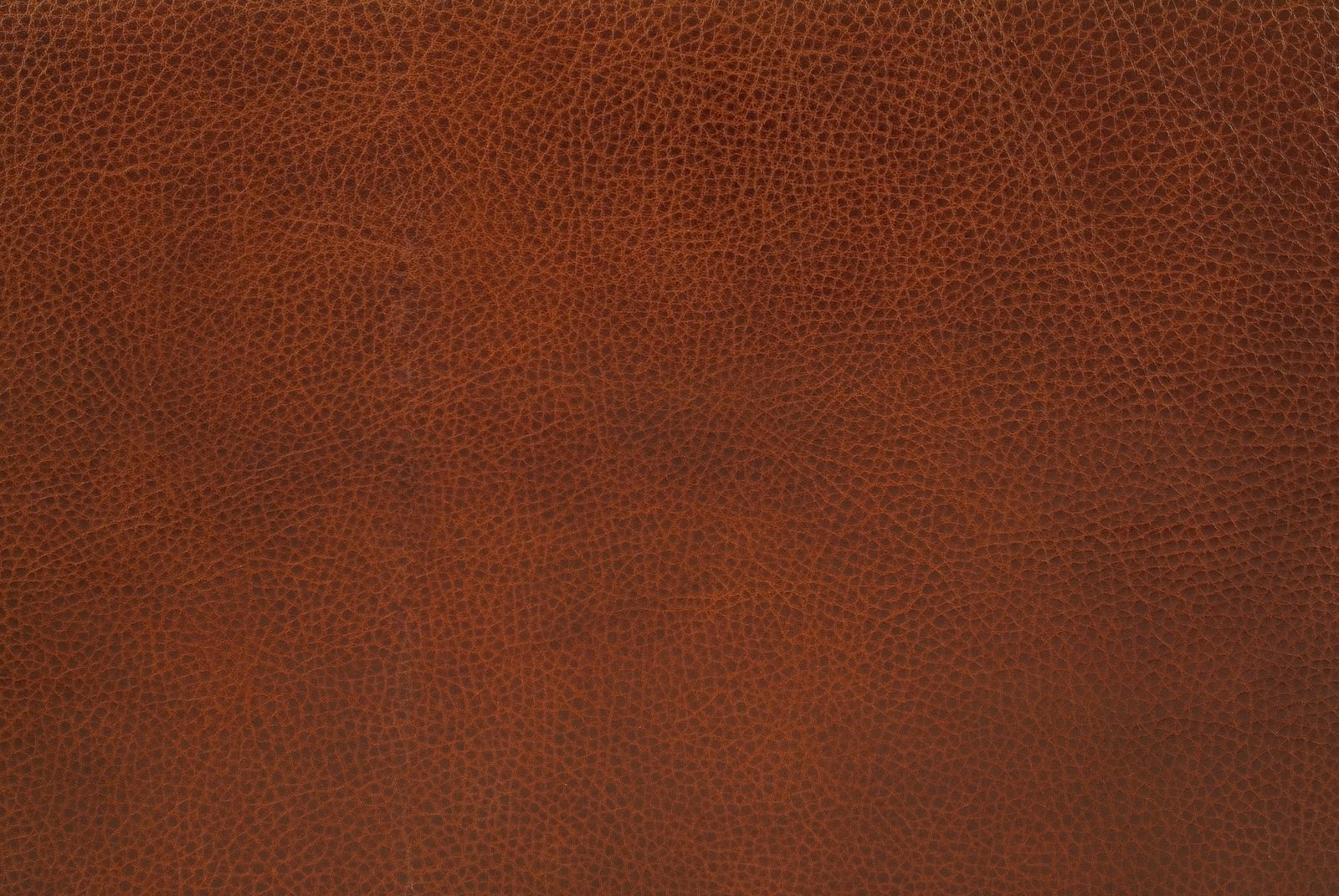 leather texture  background  leather background  leather