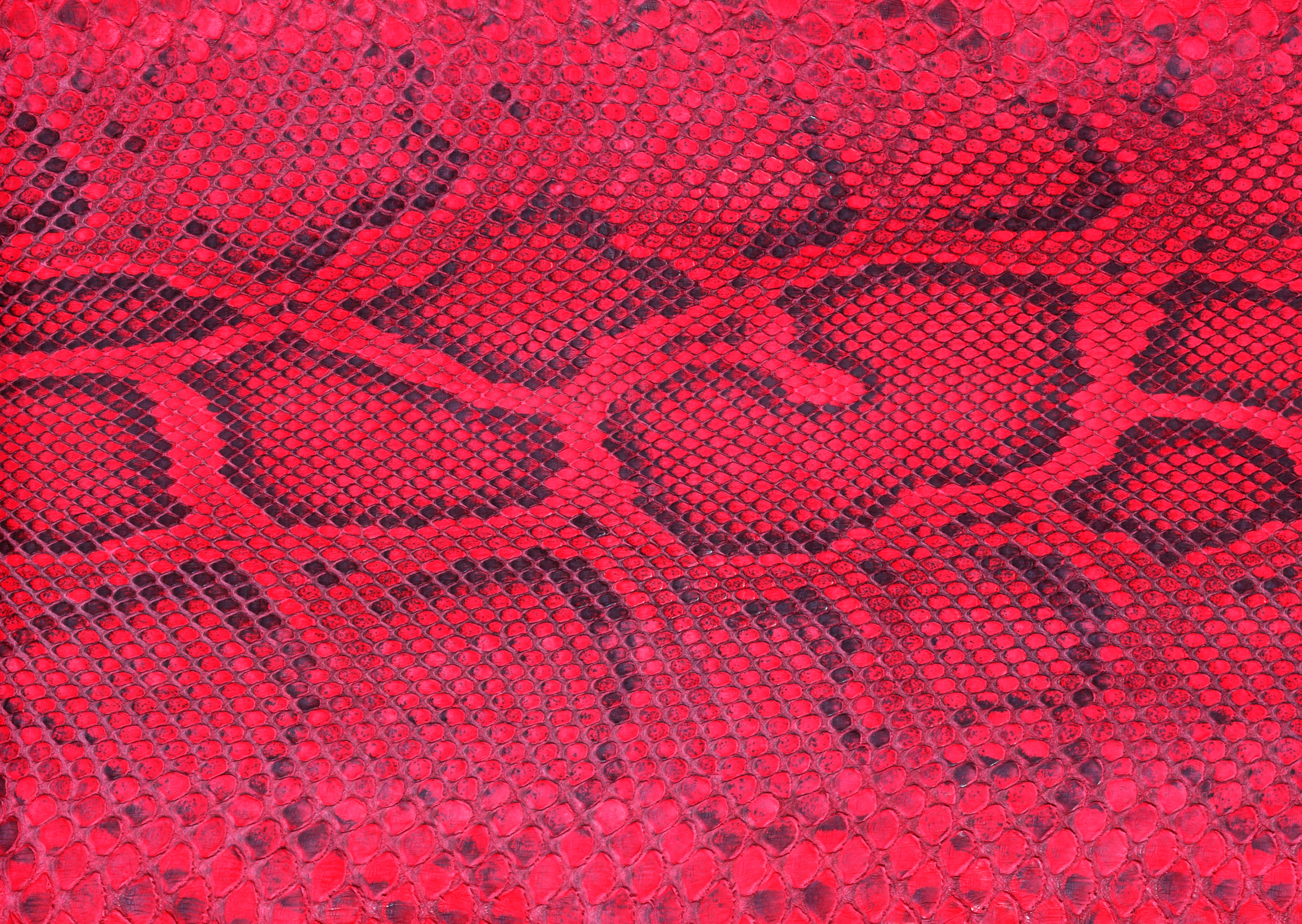 Red snake leather texture background image download, snakes