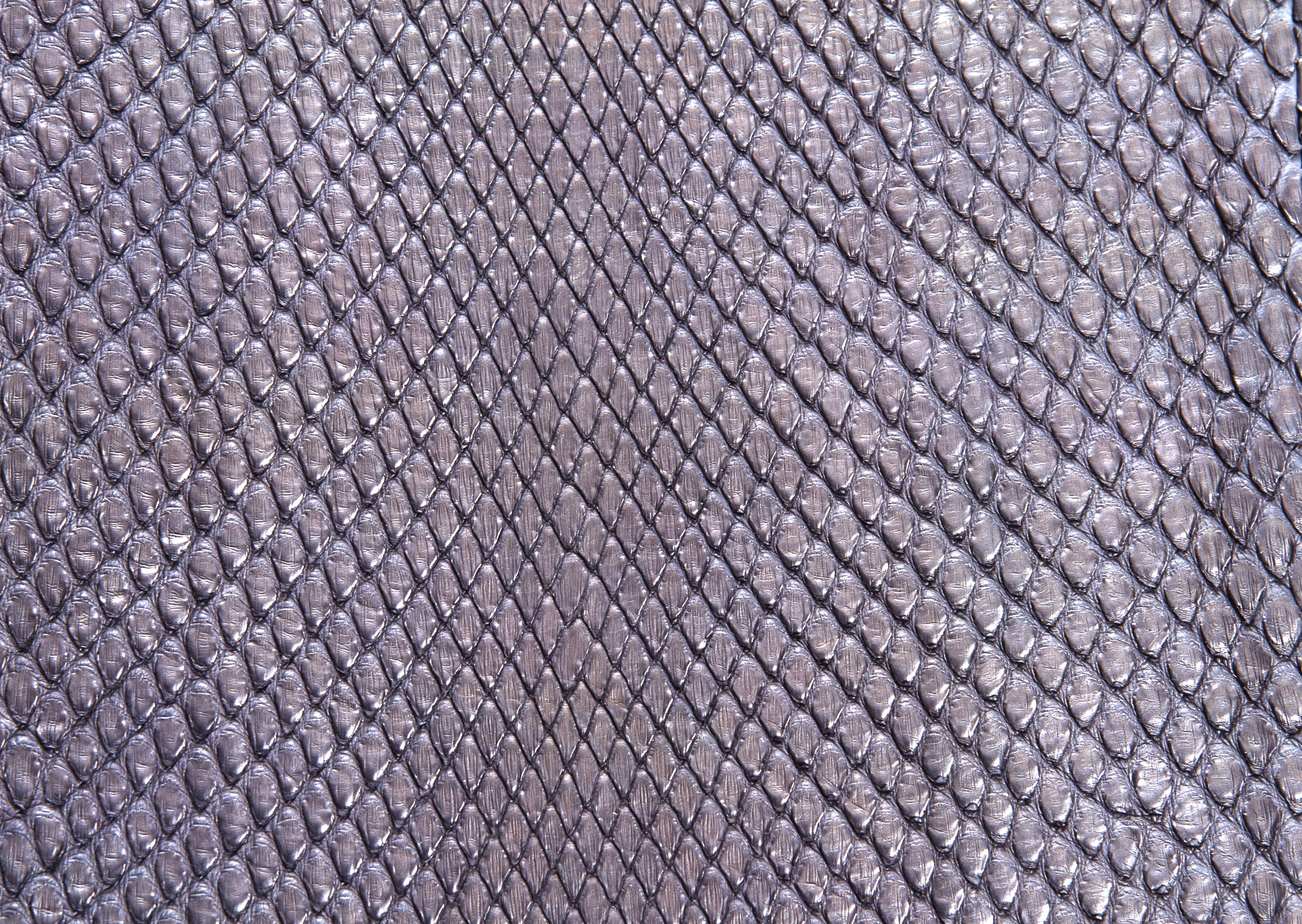 Snake leather texture background image download, snakes Чешуя Текстура