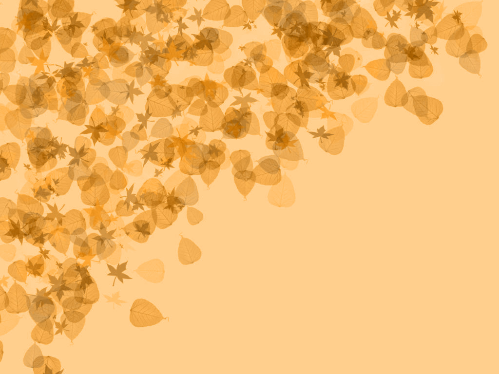 texture autumn leaves, autumn, foliage, download photo, leaves texture, background