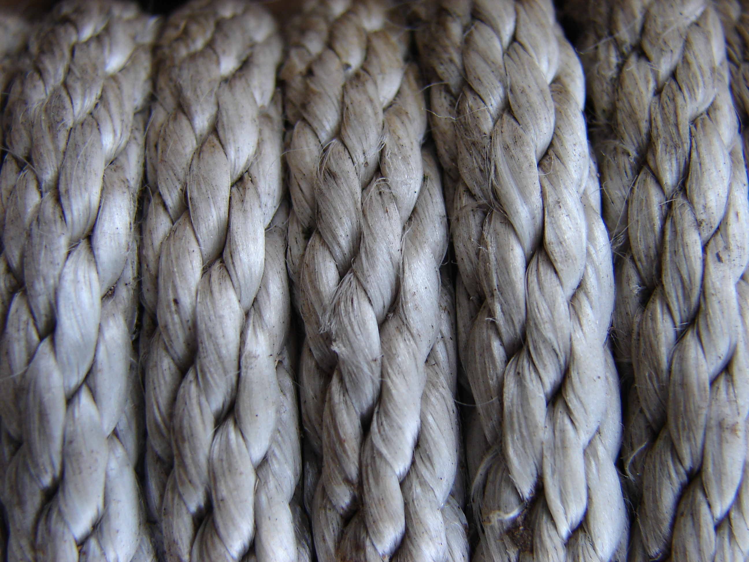 rope, texture, download photo, background, rope texture background