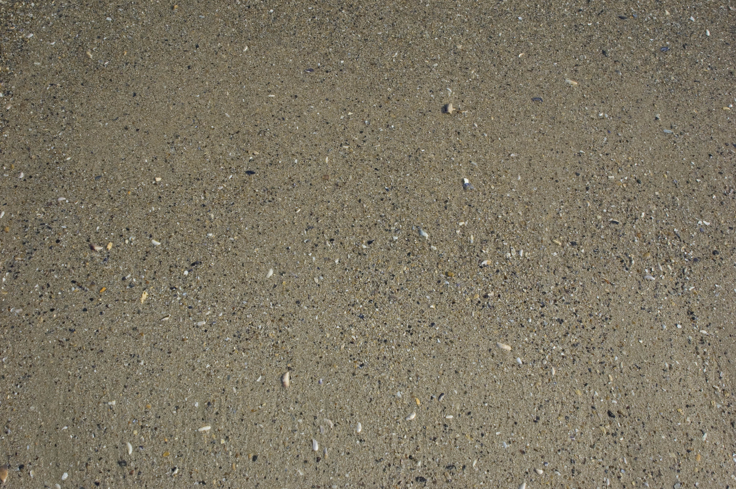 gray sand texture, sand, texture sand, beach, background, background, download photo, sand
