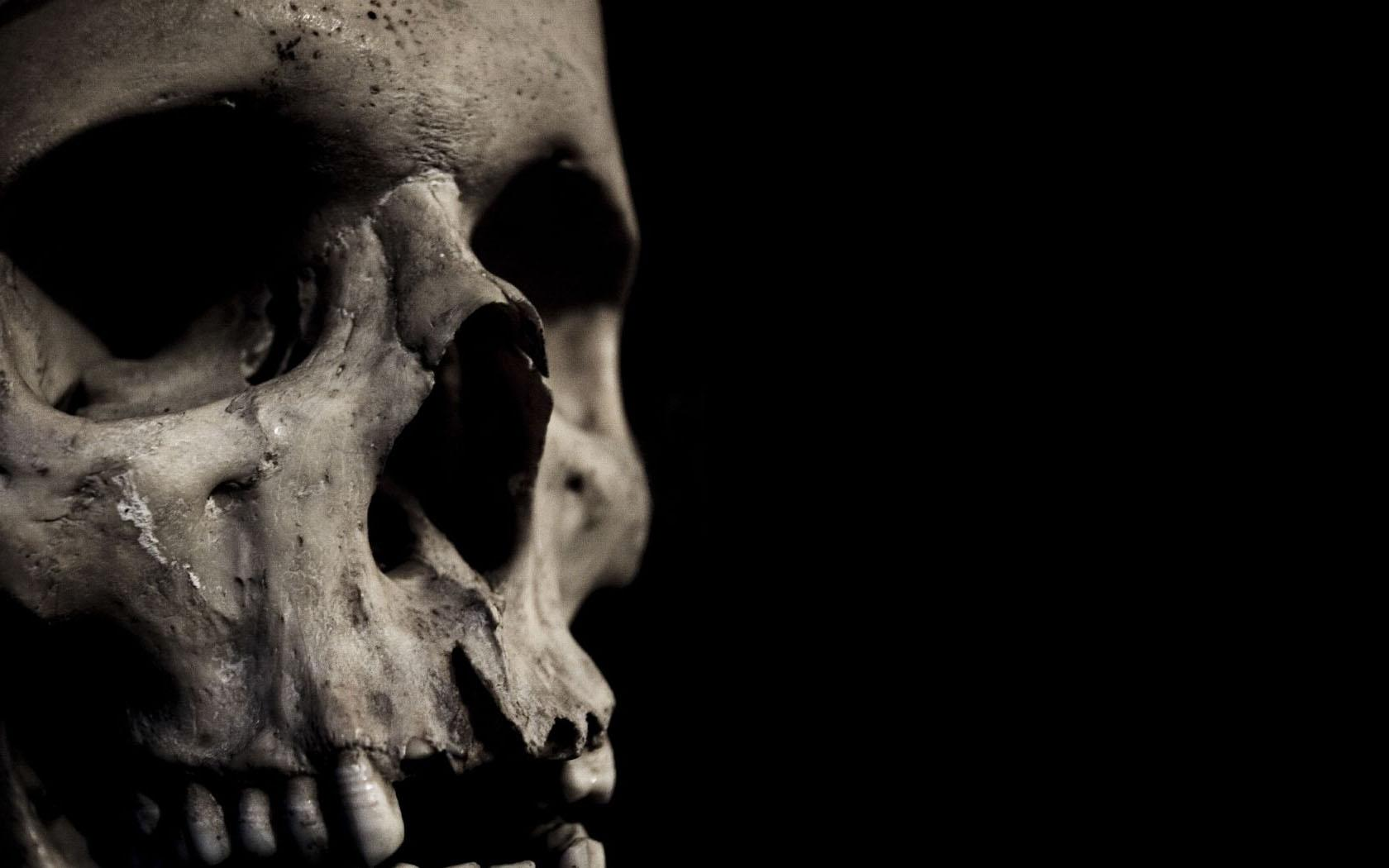 skull, background, texture, photo, skull texture background