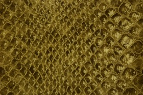 snake leather texture, background, leather  background, leather background
