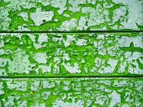 green облезшая paint, texture paints, background, download photo, green paint texture background