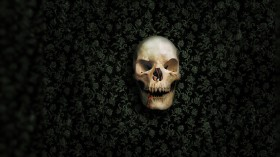 череп, фон, текстура, фото, skull texture background