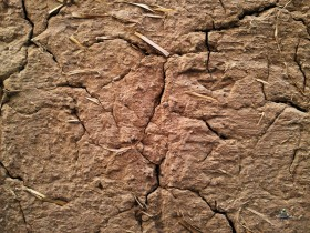 clay, stucco, texture, download photo, background, stucco background texture