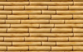 bamboo, tree wood, texture, download photo, background, wood texture