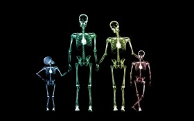 x-rays, texture, background, download photo, family x-ray texture background