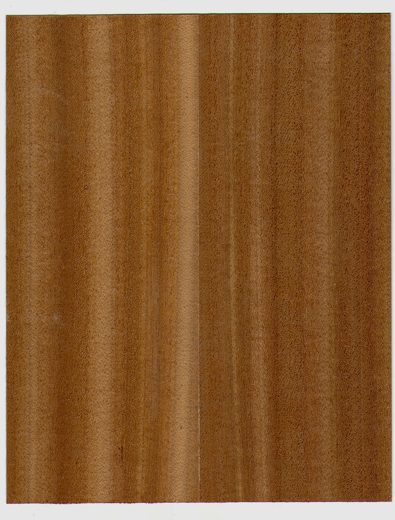 texture image: wood Texture, laminate, download photo background, wood ...