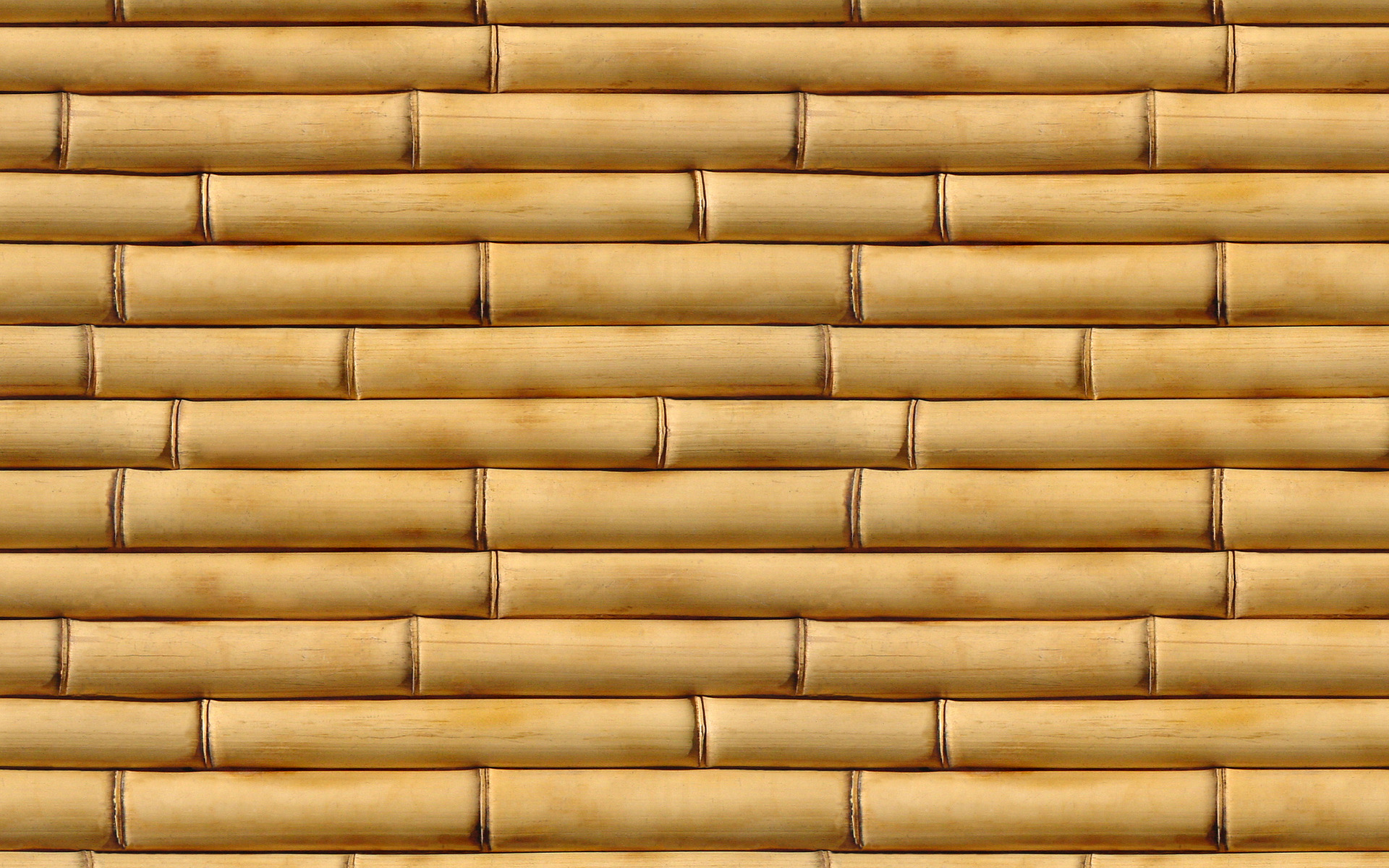 bamboo, tree wood, texture, download photo, background ...