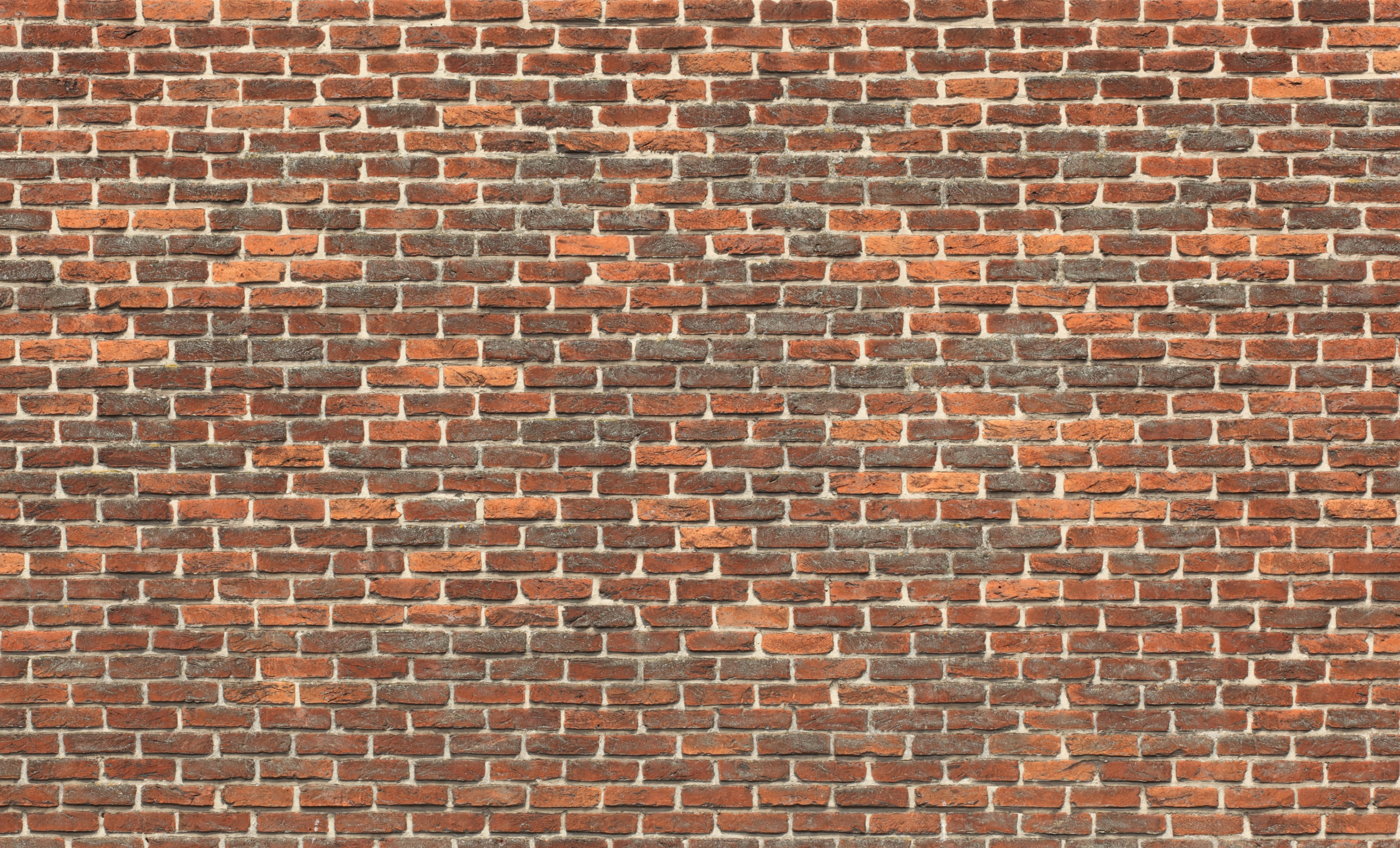Bricks wall for Wallpaper images for house walls