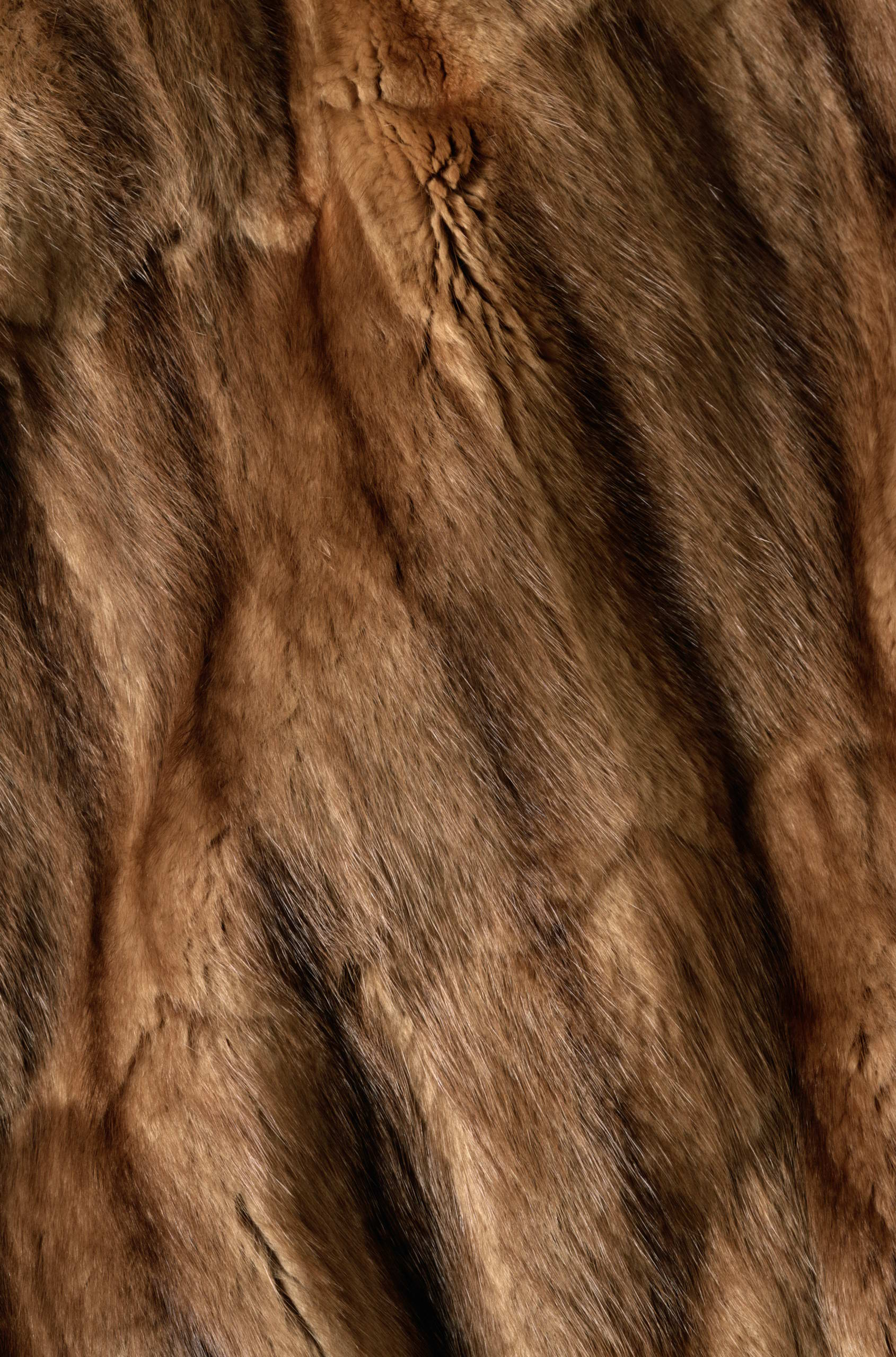 , texture fur, brown fur texture background, background