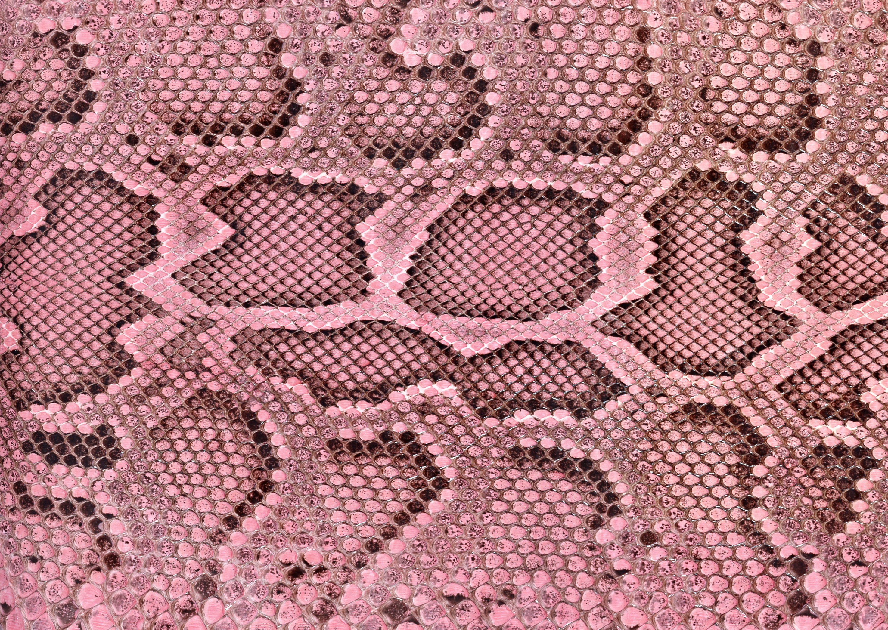 Pink snake leather texture background image download, snakes