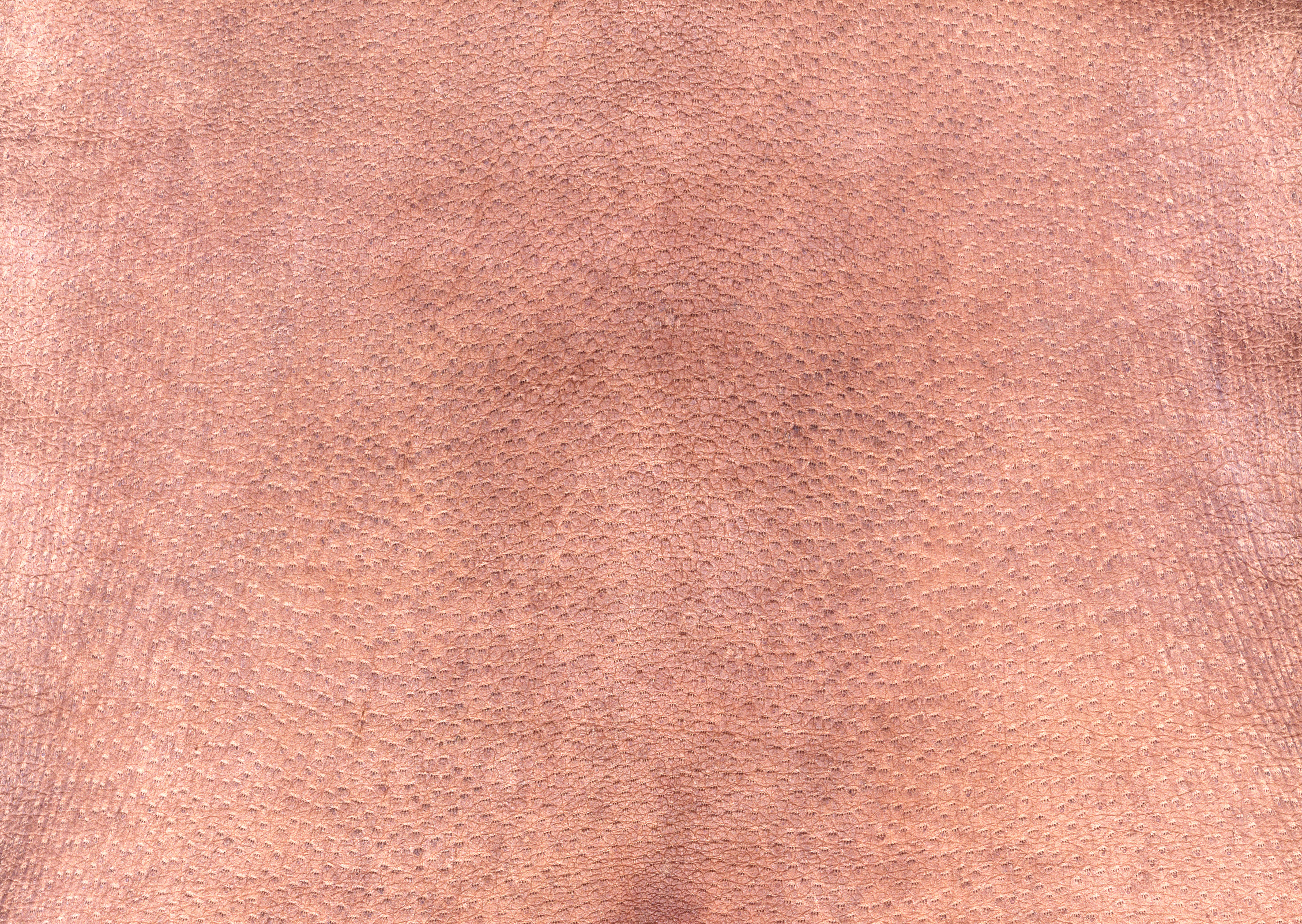 Leather texture background image