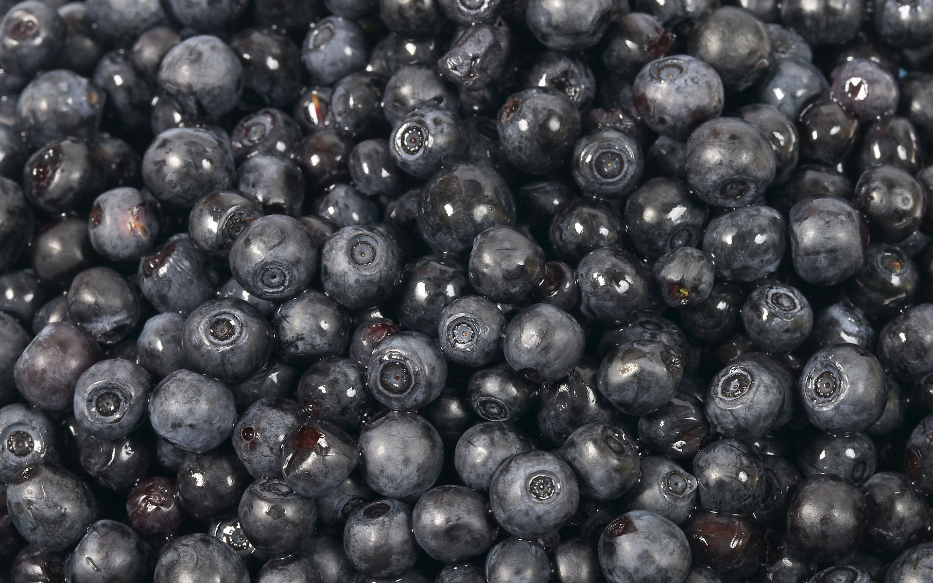 Blackberry, texture, photo, background