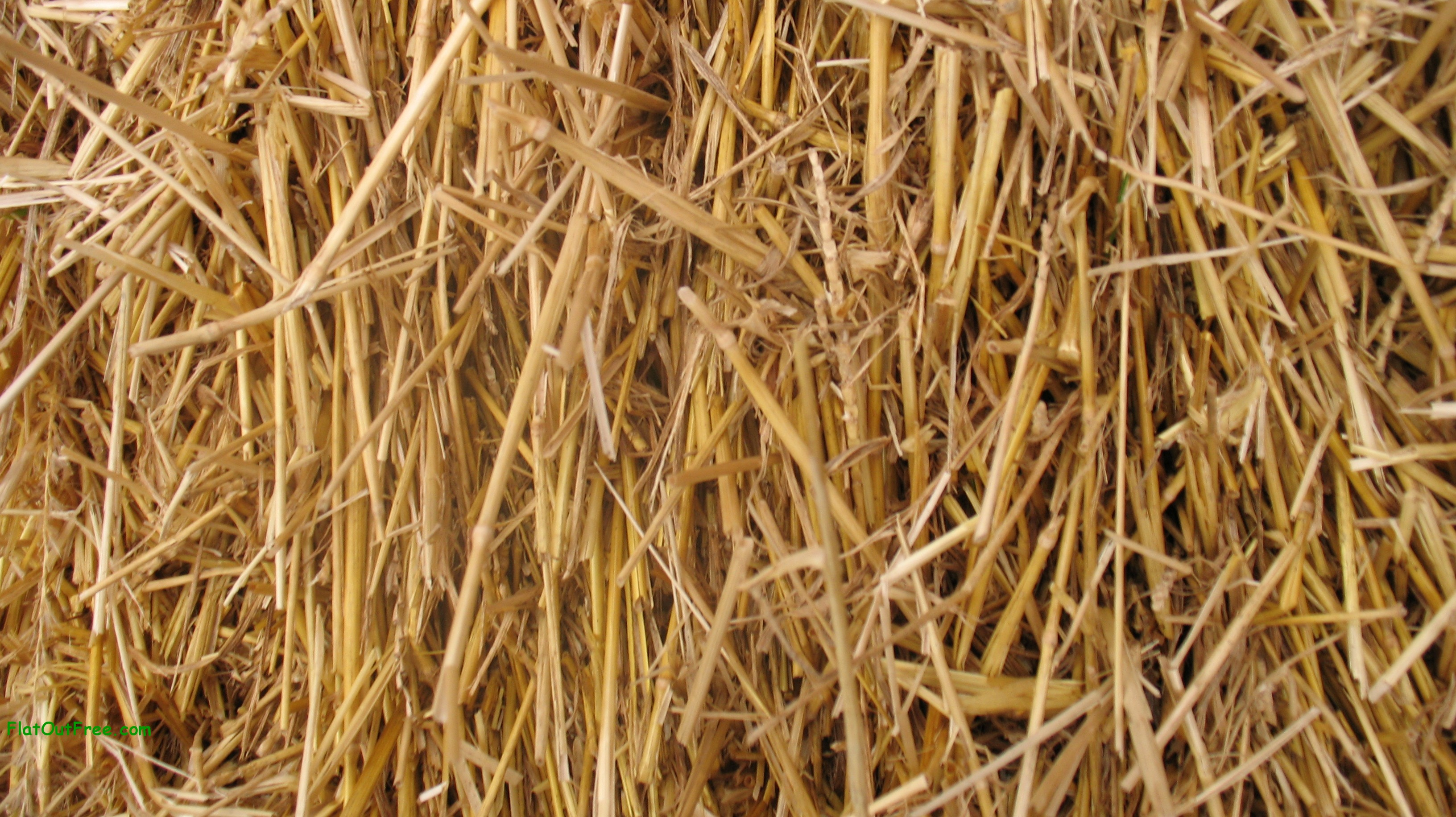 texture , download photo, background, straw texture background