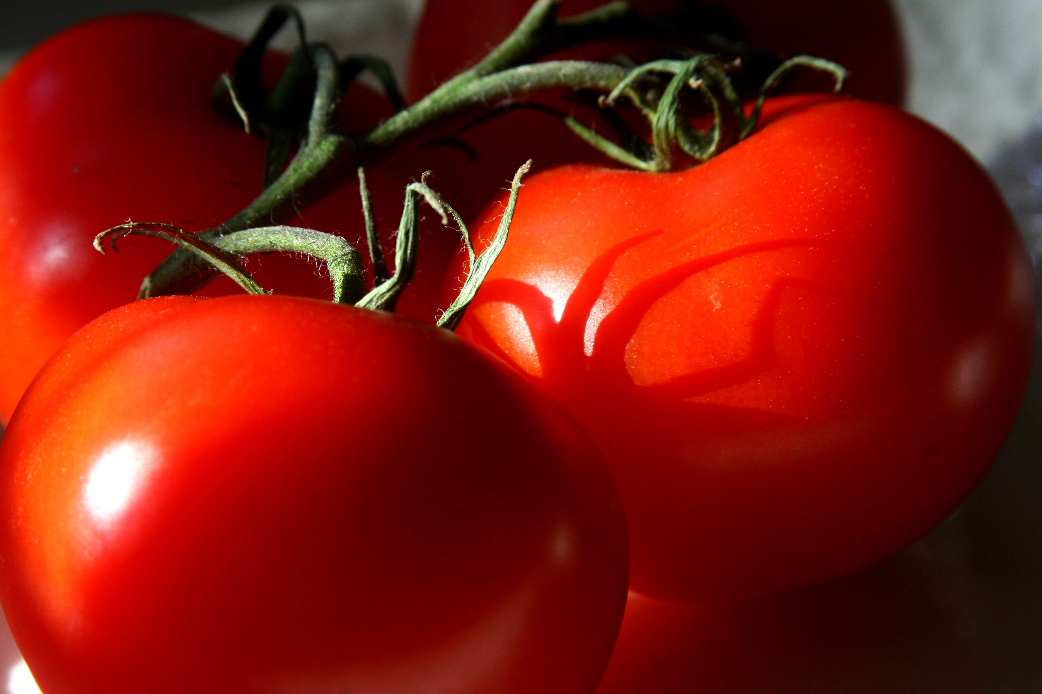Tomatoes texture background