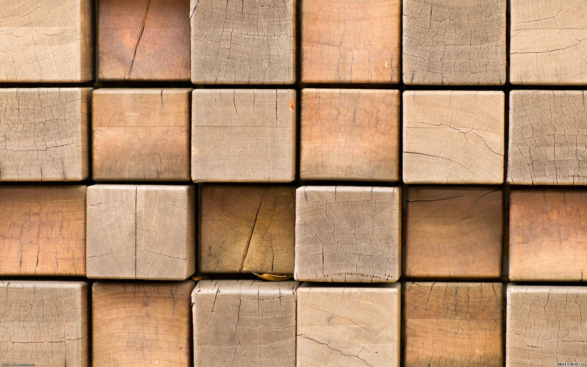 wood, tree wood, floor, planking, download photo, background