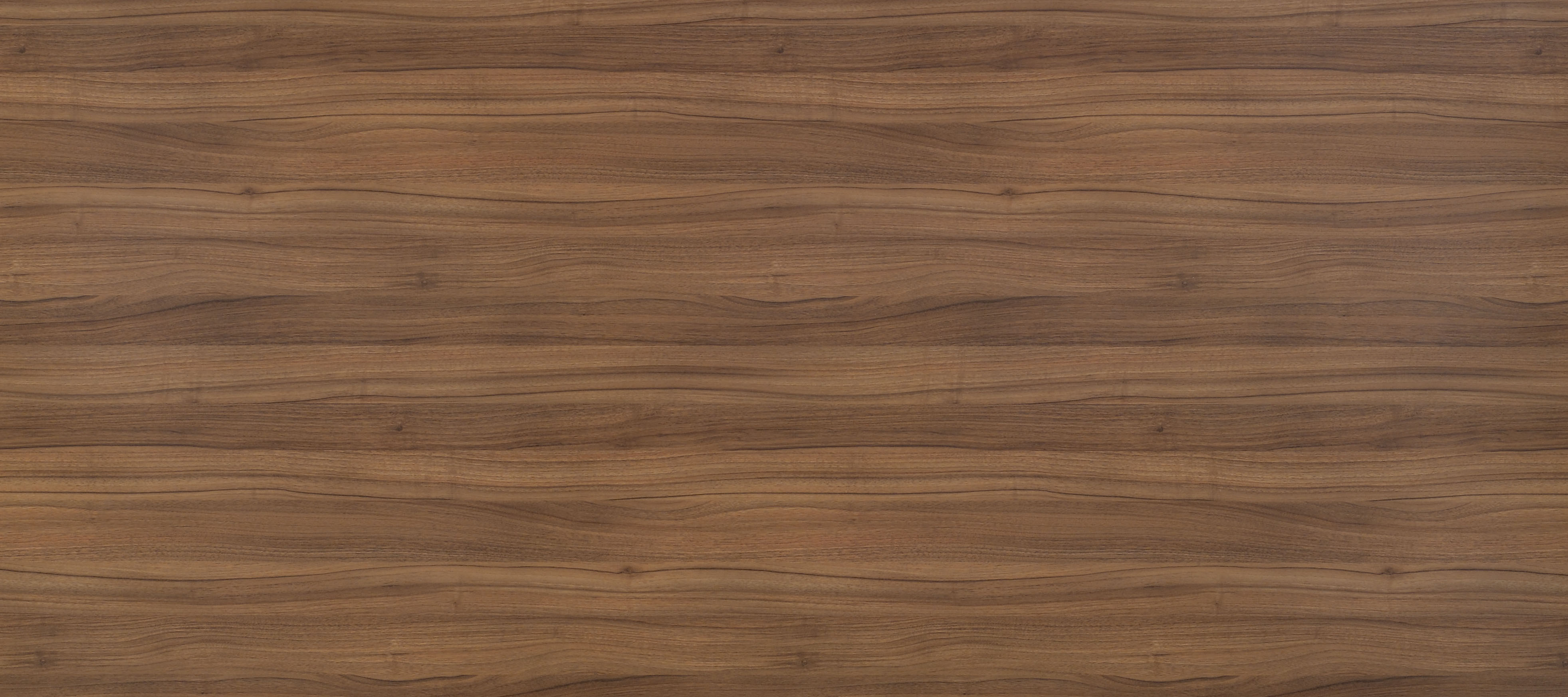 Wood Texture For Elevation : Texture wood free download photo