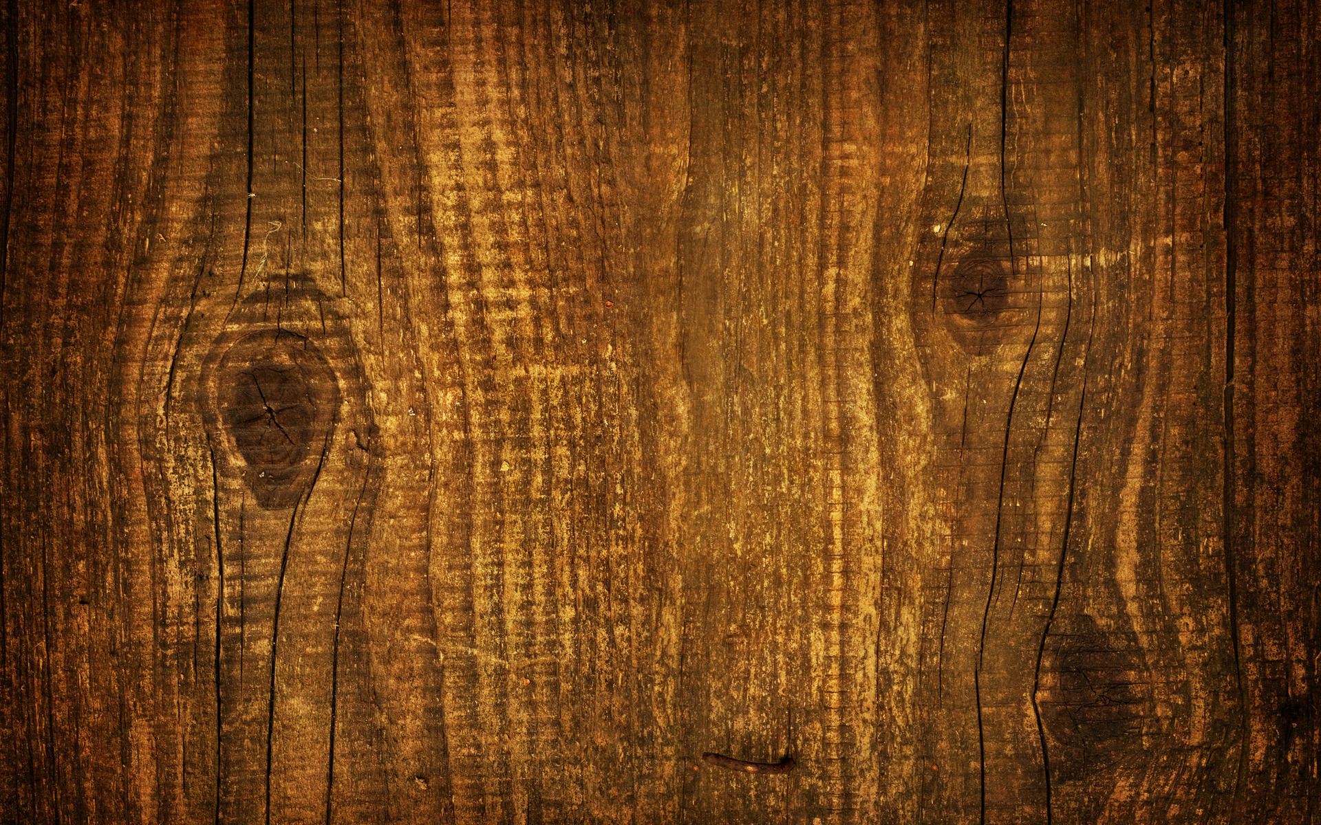 tree wood, planking, download photo, image, background