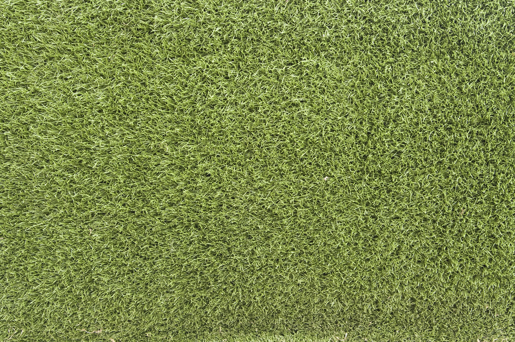 grass background texture - photo #17