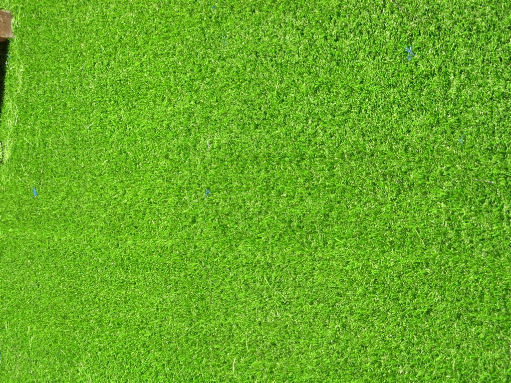 grass background texture - photo #6