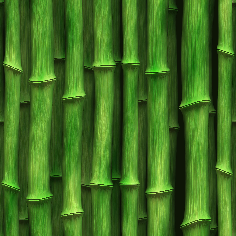 green bamboo, Texture bamboo, green bamboo texture, photo, background