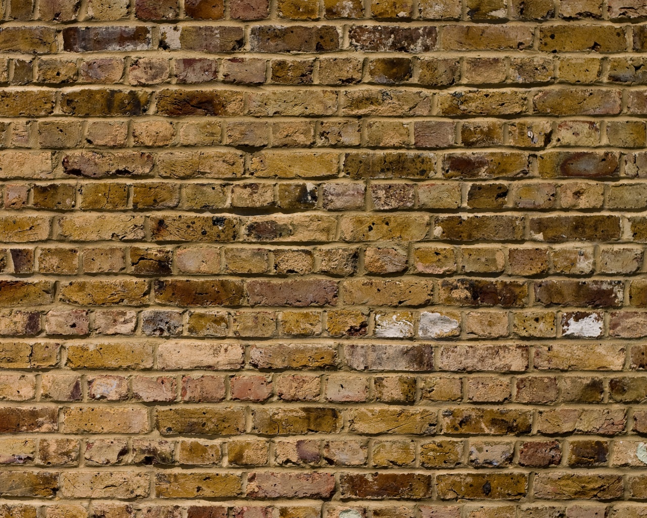 old brick wall, download photo, background, texture, old brick wall